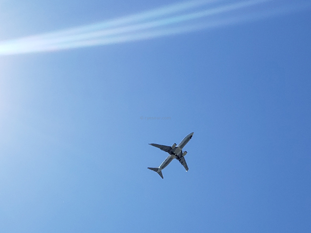airplane in the sky 飛行機